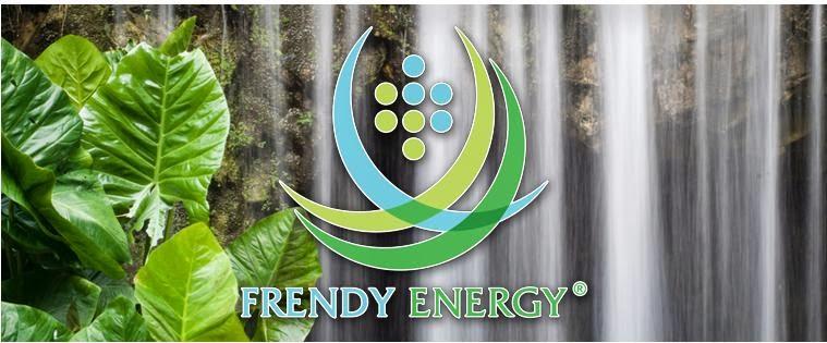 Aumento di capitale Frendy Energy: il Piccolo Risparmiatore tra diritti IT0005028037 e azioni IT0004819857