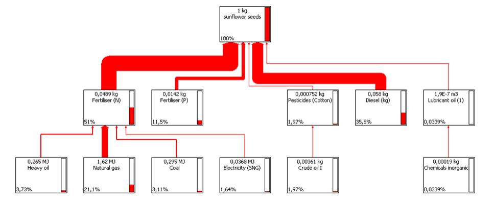 LCC biomassa