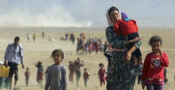 Profughi a Codigoro, intimidazioni Pd a chi accoglie rifugiati