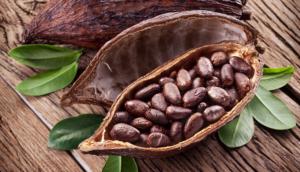 prezzo cacao